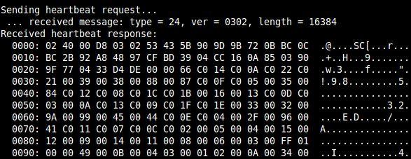 python_heartlbleed_exploit